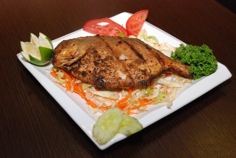 Fet fisk med sallad och några grönsaker på den vita plattan royaltyfri bild