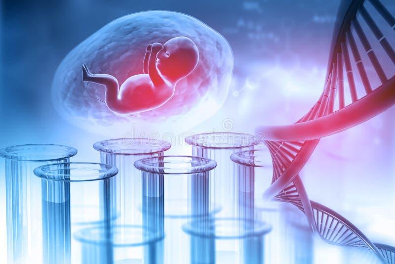 Fetal com ADN ilustração stock