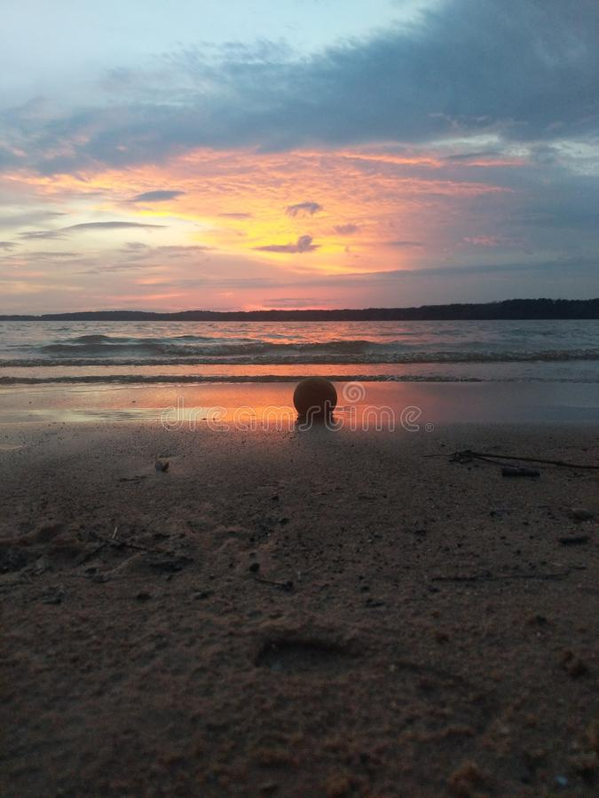 Fetch at sunset stock photo