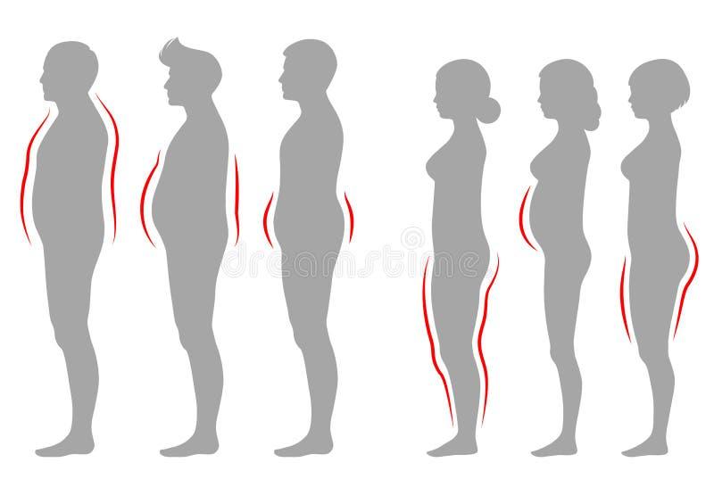 Fetmakvinna- och mankroppstyp, vektordiagram överviktkontur royaltyfri illustrationer