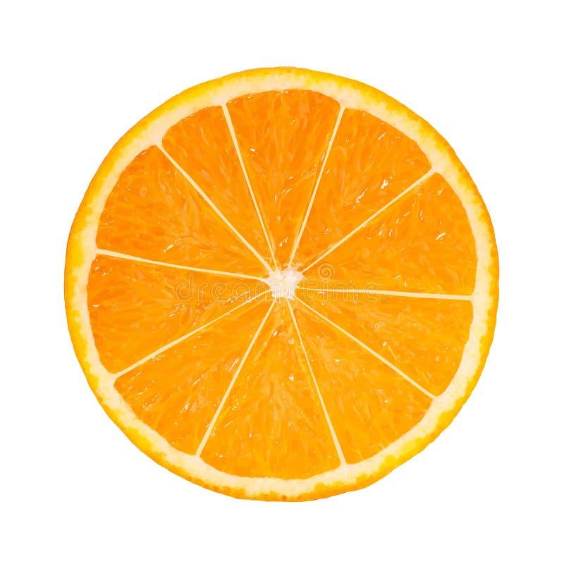 fetta arancio Foto-realistica illustrazione vettoriale