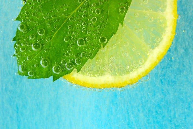 Fetta del limone, foglia della menta ed acqua con le bolle immagini stock
