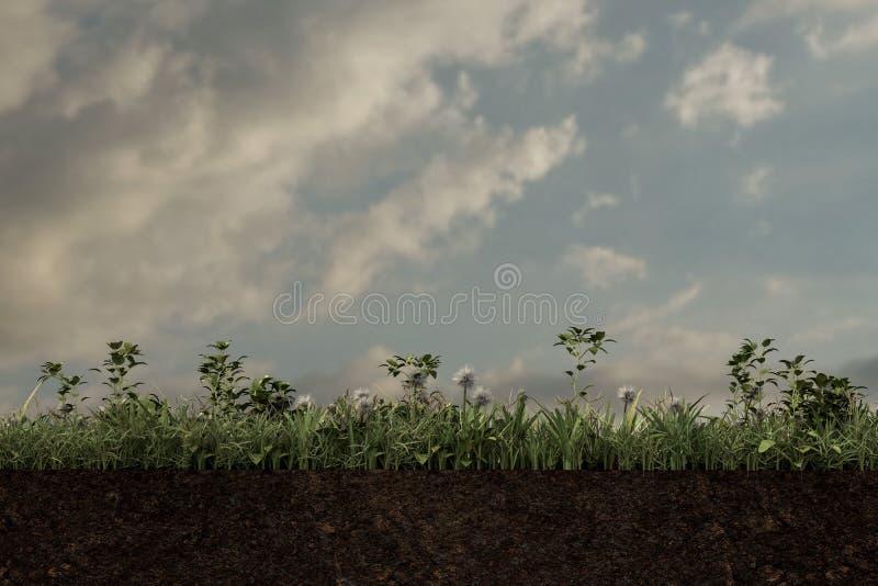 Fetta del suolo illustrazione vettoriale