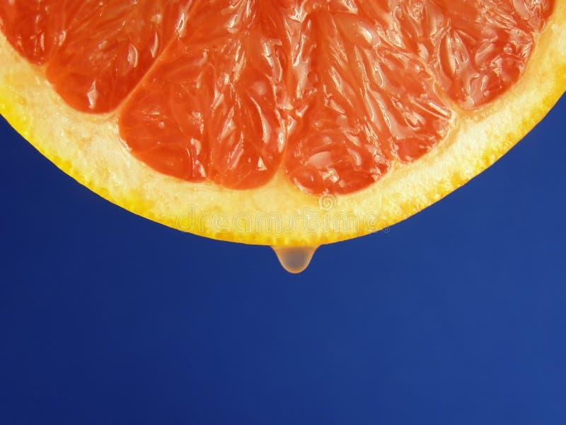 Fetta della frutta dell'uva rossa fotografia stock libera da diritti