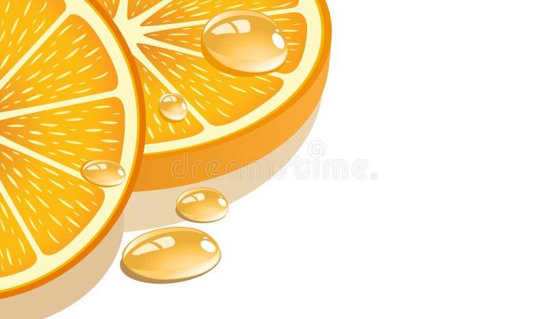 Fetta di arancio illustrazione di stock