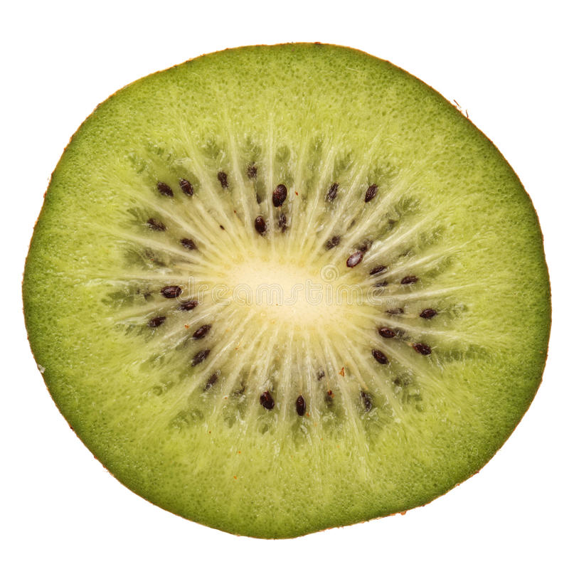 Fetta di kiwi fotografie stock libere da diritti
