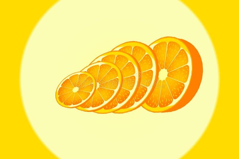 Fetta matura del cerchio arancio dell'oggetto immagine stock libera da diritti
