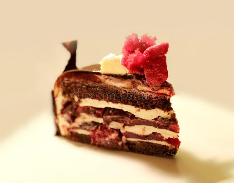 Fetta stratificata tradizionale del dolce di cioccolato della foresta nera con le decorazioni e le ciliege rosse immagini stock