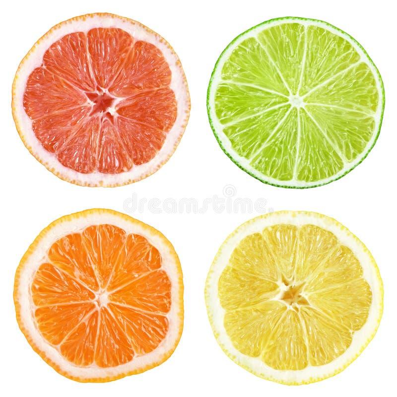 Fette di pompelmo, calce, limone, arancio fotografia stock libera da diritti