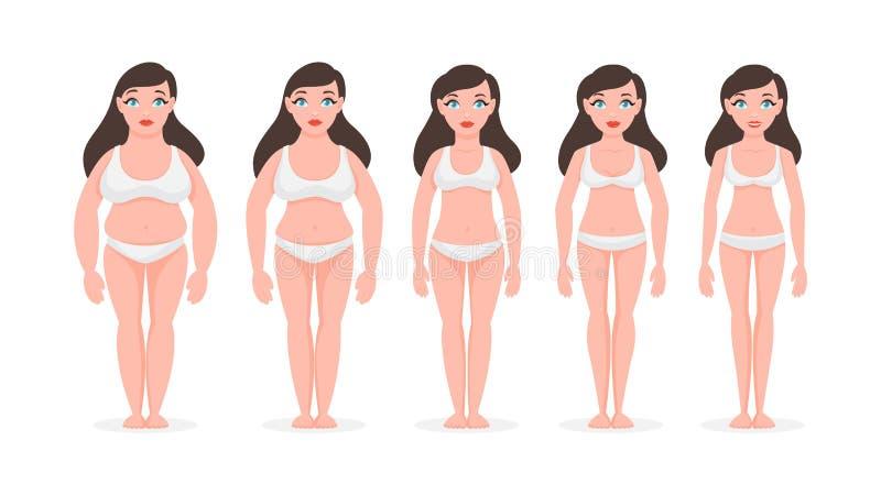 Fette Frau werden dünn Schöner Frauenbauch über Weiß stock abbildung