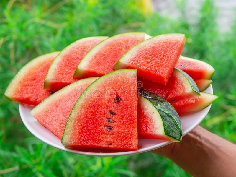 Fette mature fresche sul piatto bianco, fine del triangolo dell'anguria su fotografie stock