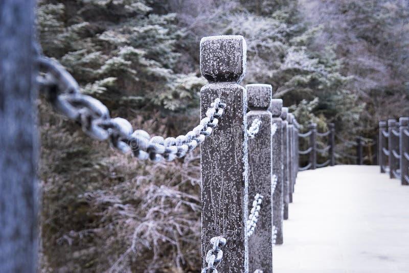 Fetter and bridge. Of freezing,so beautiful royalty free stock photo