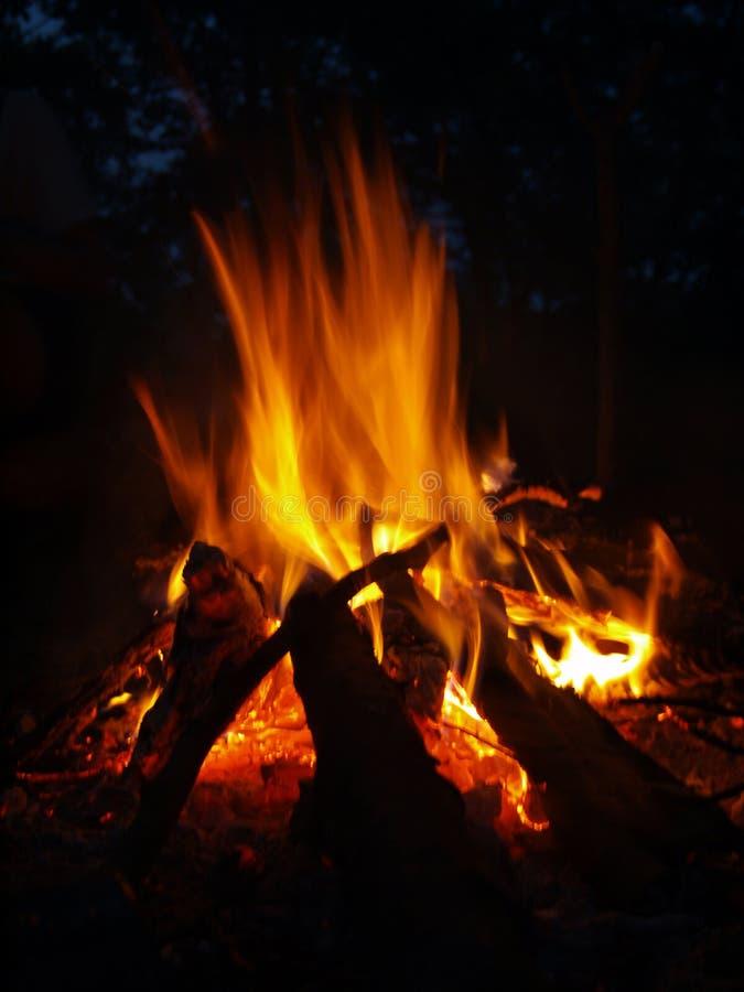feu photo stock