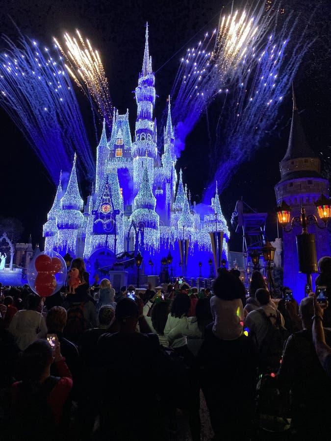 Feu d'artifice des fêtes de fin d'année au château Magic Kingdom Walt Disney World Orlando Florida photo de nuit images libres de droits