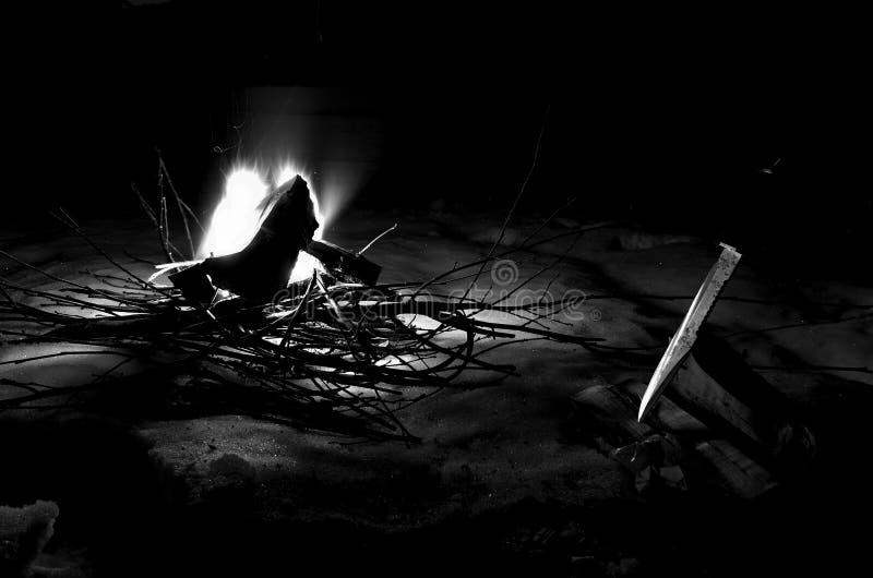 Feu de bois brûlant lumineux de bouleau en nature neigeuse d'hiver la nuit image libre de droits