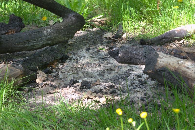 Feu de camp énorme éteint, établi des branches et des troncs entiers o images stock