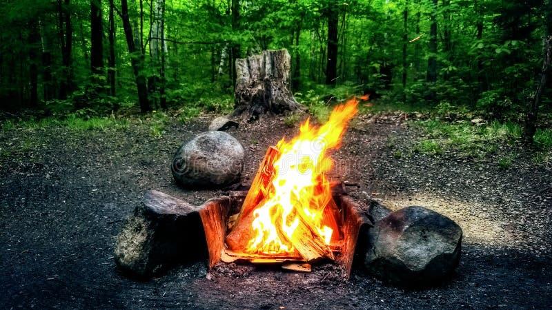 Feu de camp dans les bois photos libres de droits