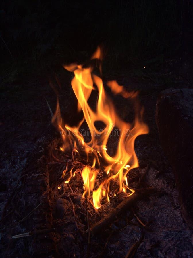 Feu de camp de forêt images stock