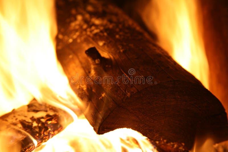 Feu de camp - flammes brûlantes en bois photographie stock libre de droits