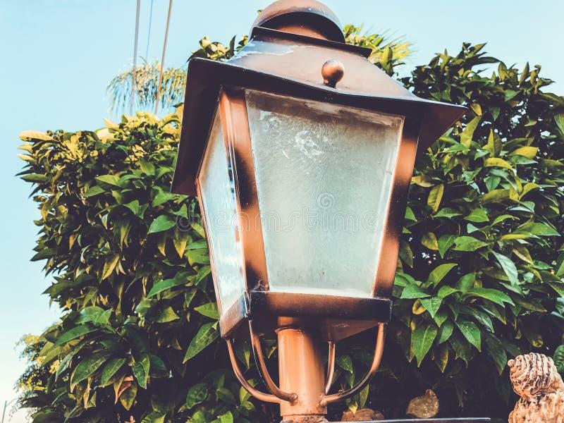 Feu de rue pendant la journée Vieux lampadaire dans la rue au fond de la nature photos libres de droits