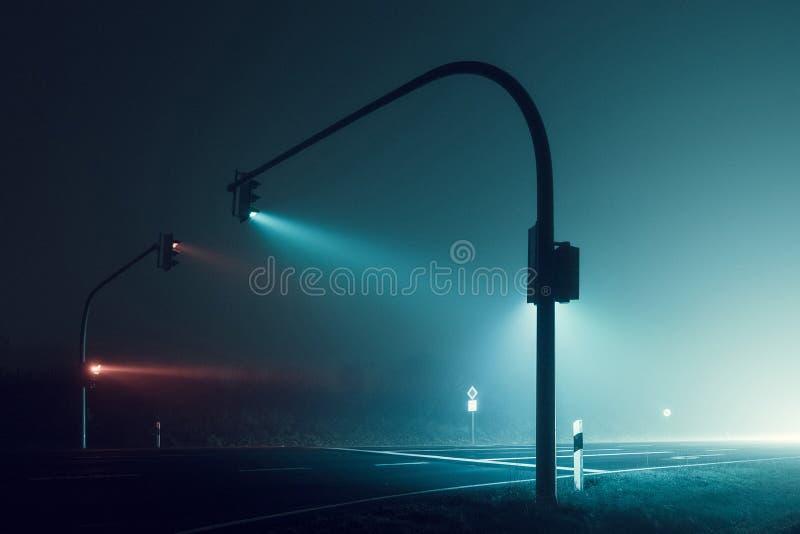 Feu de signalisation pendant la nuit foncée photo libre de droits