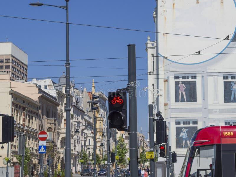 Feu de signalisation rouge pour le vélo au centre de la ville de Lodz dans le St de Piotrkowska photo stock