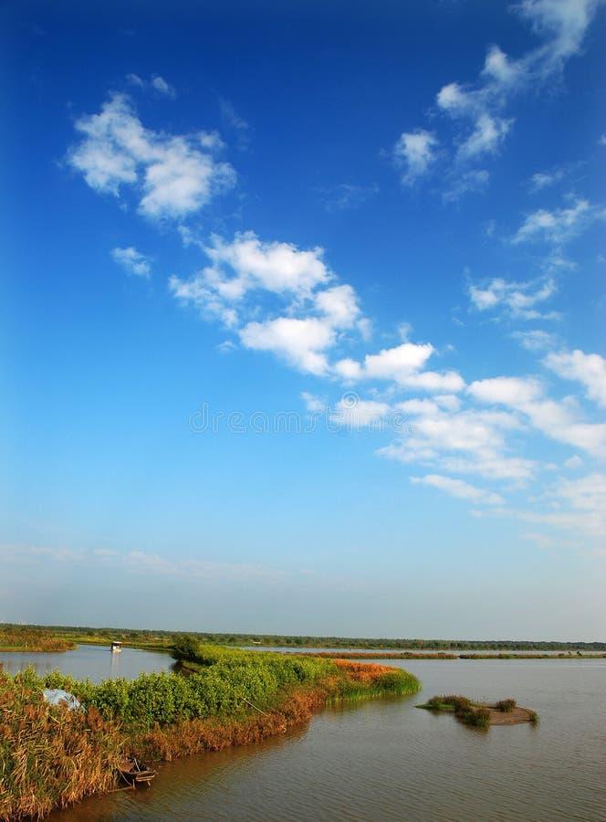 Feuchtgebiete und blauer Himmel stockbild