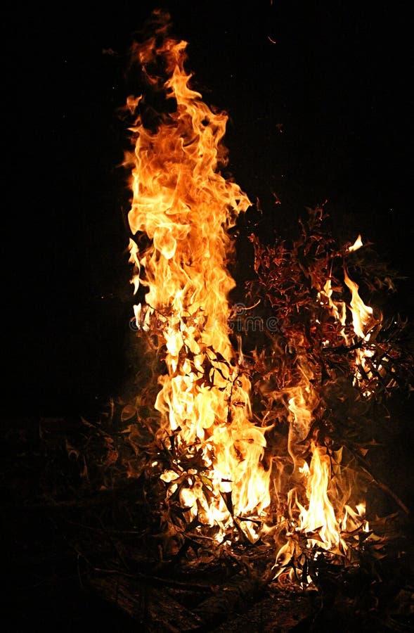 Feuer 7 stockfoto