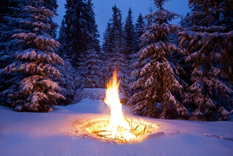 Feuer auf Schnee lizenzfreie stockfotografie