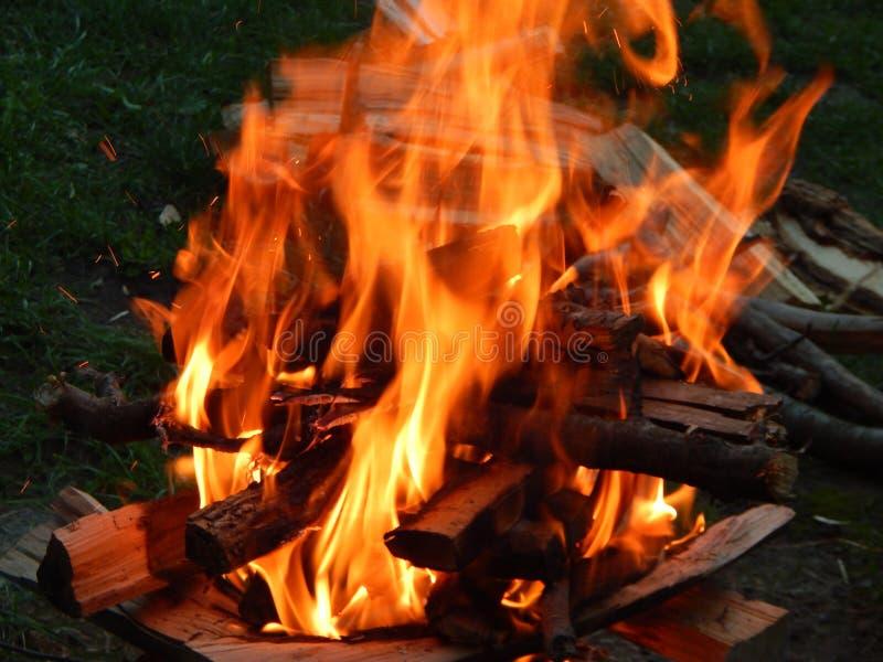 Feuer, brennendes Brennholz des Feuers stockbilder
