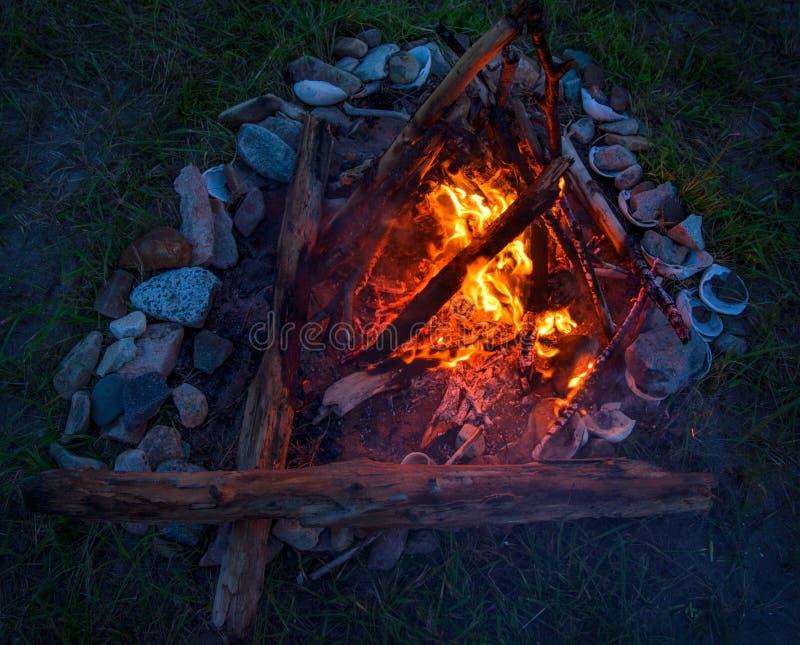 Feuer, das auf dem Strand nachts brennt helles Feuer, Brennholz flamme stockfoto