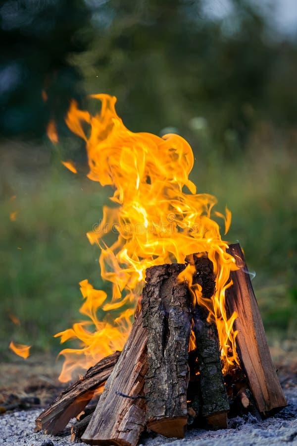 Feuer, das auf der Straße brennt Grillfrankfurter lizenzfreies stockfoto