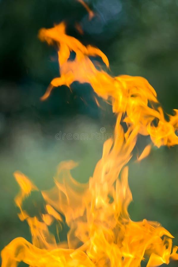 Feuer, das auf der Straße brennt Grillfrankfurter lizenzfreies stockbild
