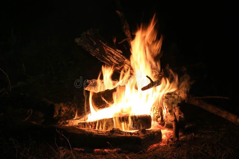 Feuer in der Dunkelheit lizenzfreie stockfotos