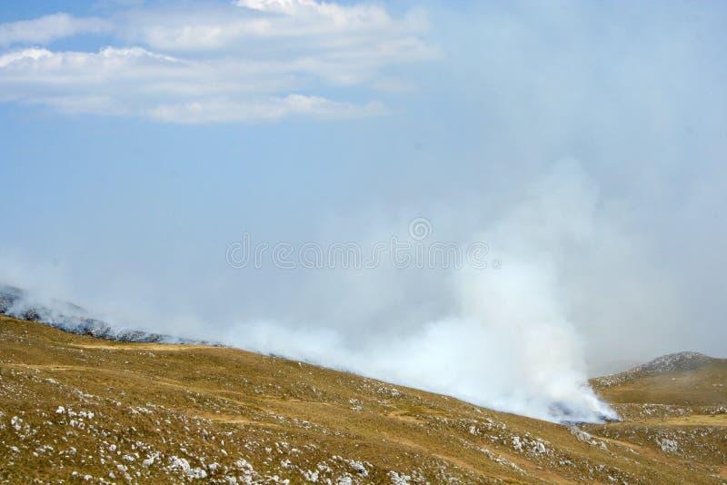 Download Feuer des trockenen Grases stockbild. Bild von brand - 26374441