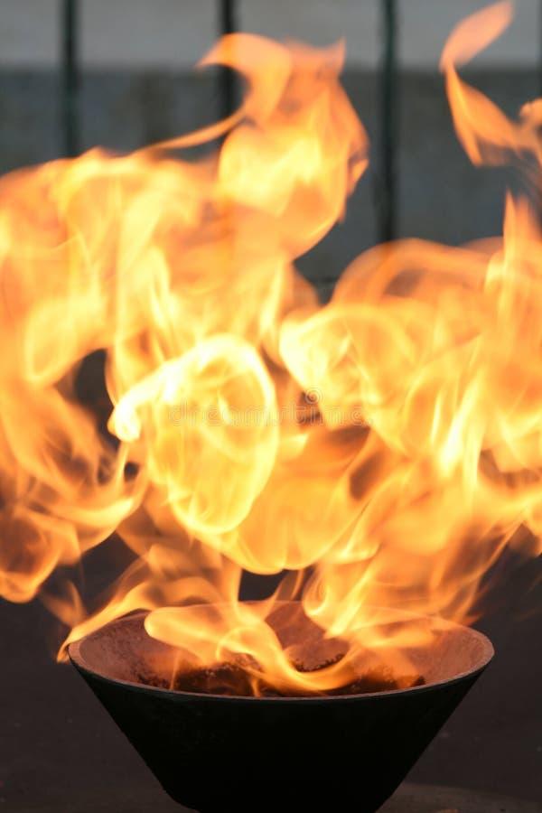 Feuer-Flamme - königlicher Schrein, Melbourne, Australien lizenzfreie stockbilder