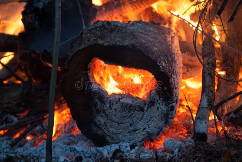 Feuer - gebrannt durch Klotz stockfoto