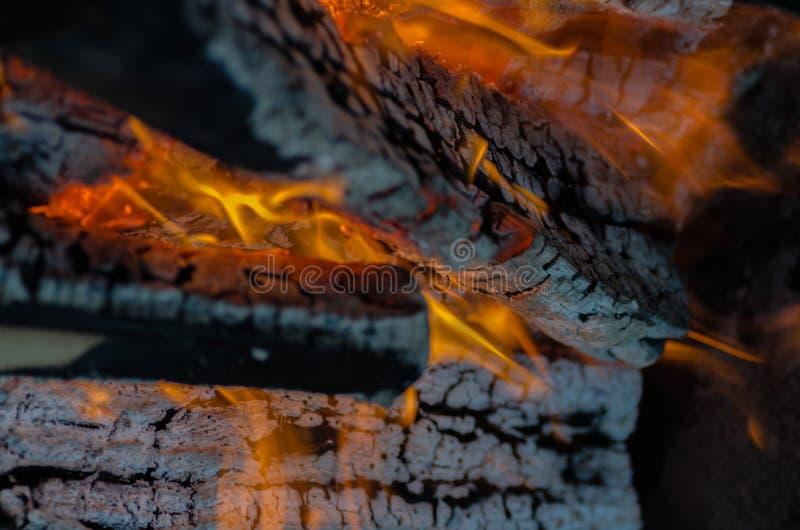 feuer holzkohle temperatur flamme glut burning holz feuer asche lagerfeuer orange. Black Bedroom Furniture Sets. Home Design Ideas