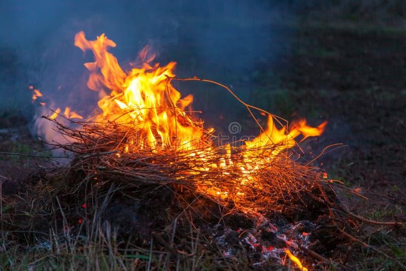 Feuer im Feld eveningd stockfoto