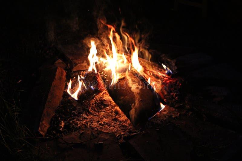 Feuer im Waldsibirischen Wald Taiga baikal Birkenwald stockbild