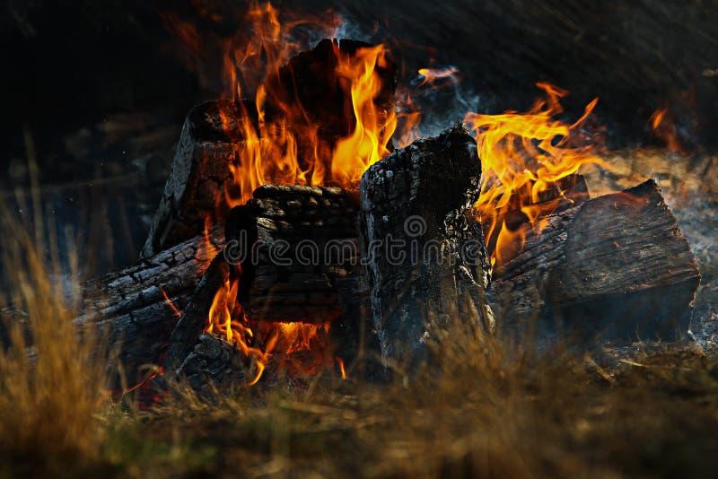 Feuer mit den schwarzen Kohlen stockbilder