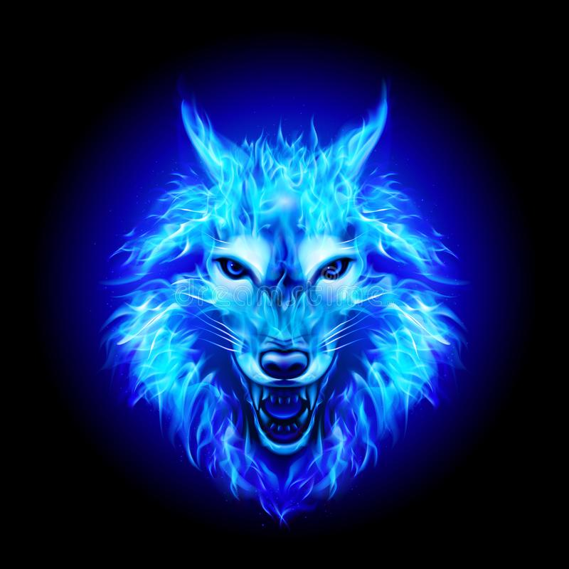 Feuer Wolf Head stock abbildung
