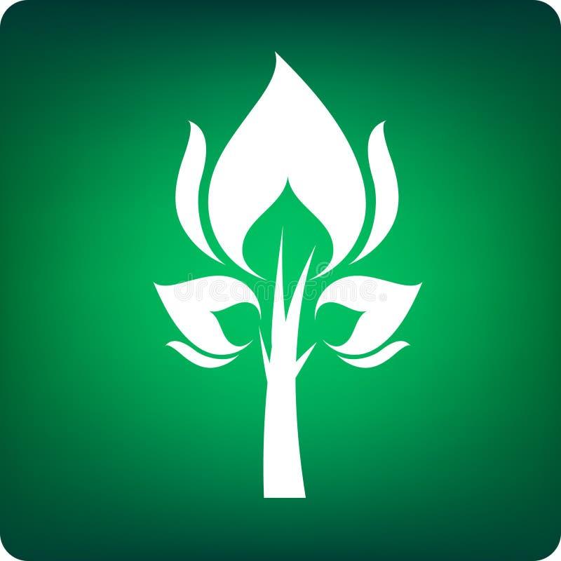 Feuerbaum stock abbildung