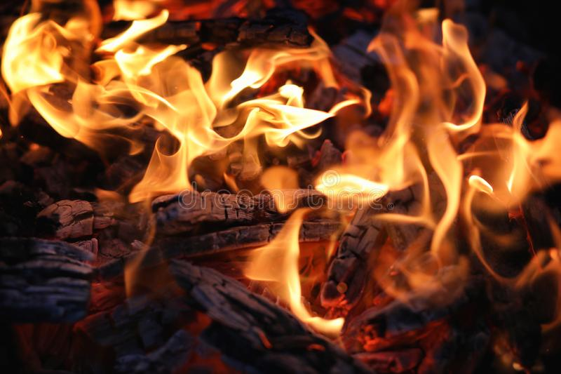 Feuerflamme und -kohle stockfotografie