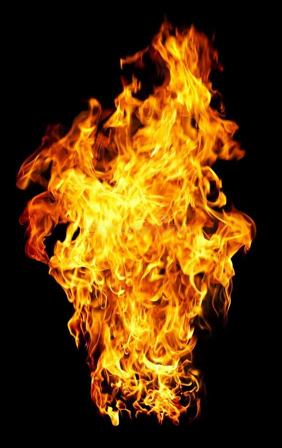 Feuerfoto auf einem schwarzen Hintergrund lizenzfreies stockfoto