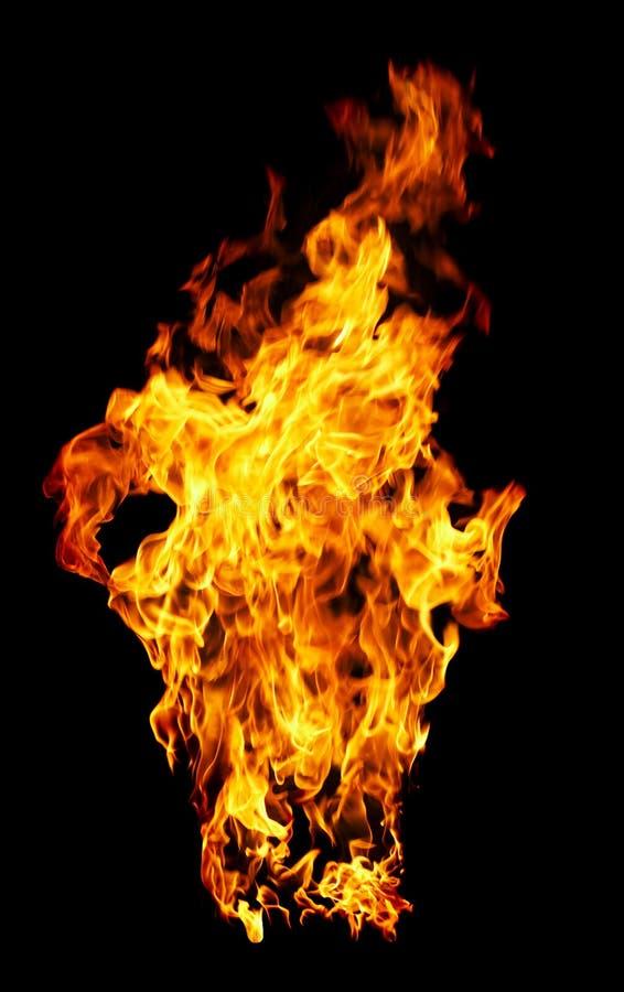 Feuerfoto auf einem schwarzen Hintergrund stockfoto