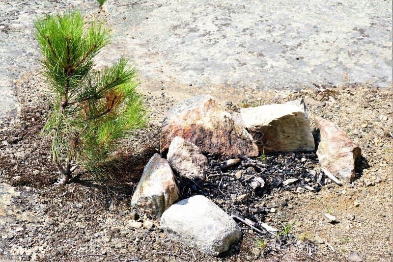 Feuergrube auf der Spur stockbilder