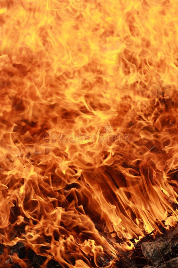 Feuersbrunst lizenzfreie stockbilder