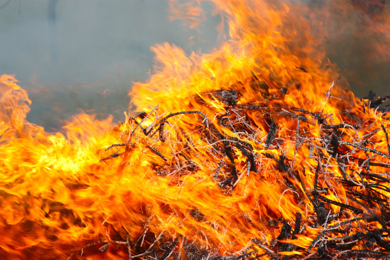 Download Feuersbrunst stockfoto. Bild von schein, glare, hitze - 9077348