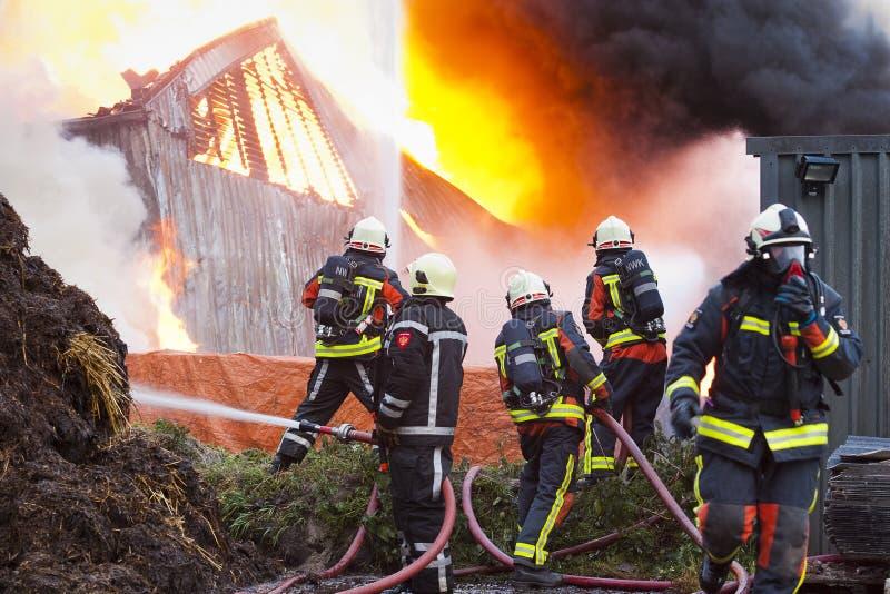 Feuerwehrmänner in der Tätigkeit stockfotos